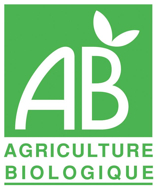 Logo absite