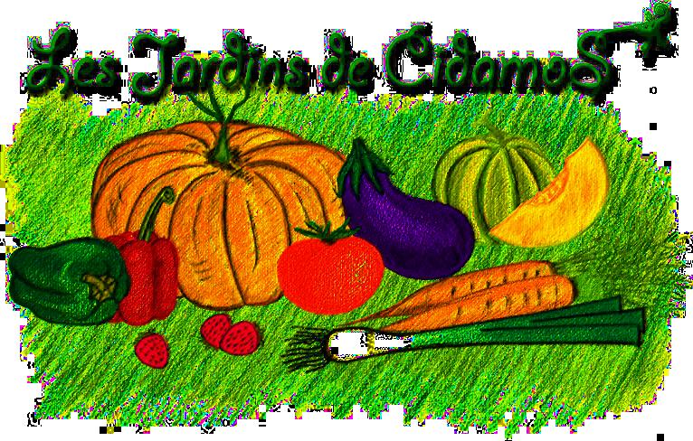 jardinsdecidamos